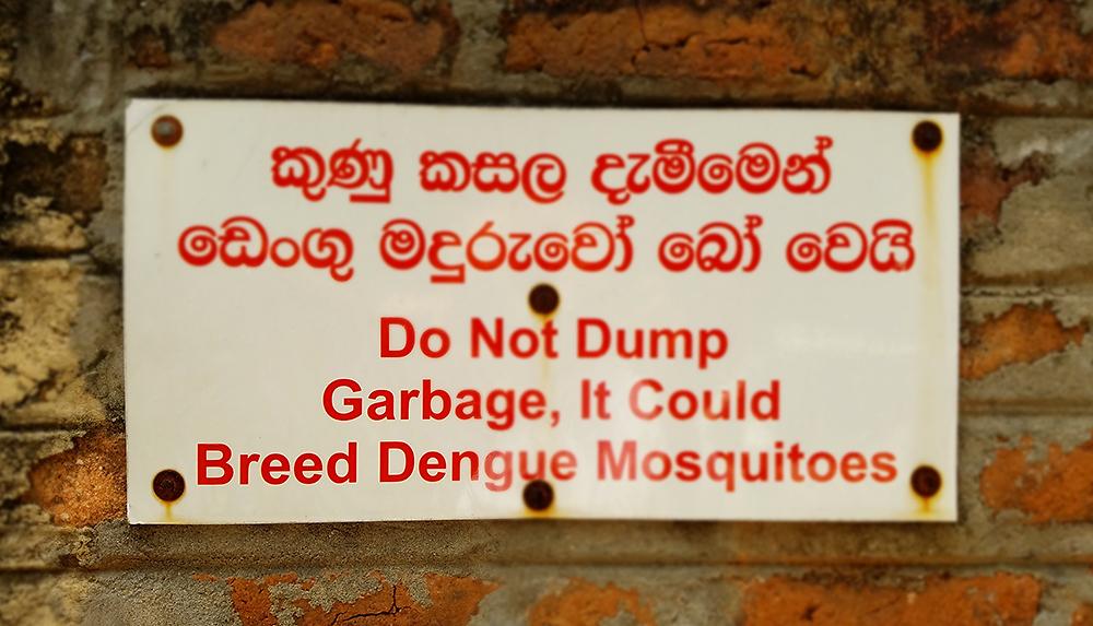 dengue warning